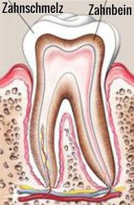 Zahnbleaching Grafik Zahn mit Zahnschmelz