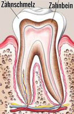 Zahnbleaching Grafik Zahn mit Zahnschmelz - weissezaehnebleaching.de